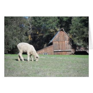 California Farm Greeting Card