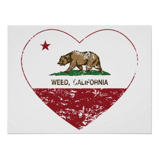 california flag weed heart distressed poster