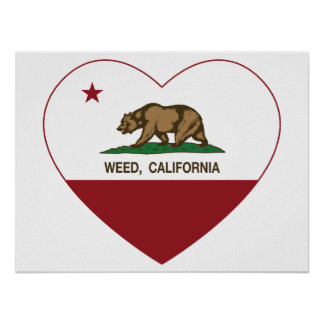 california flag weed heart poster