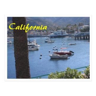 California Got Sushi Postcard