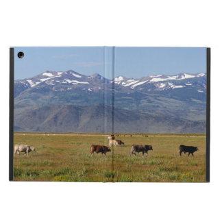 California HWY 395 Landscape iPad Air Case