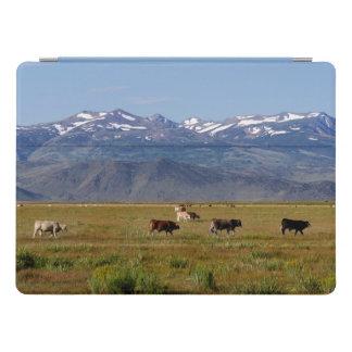 California HWY 395 Landscape iPad Pro Cover