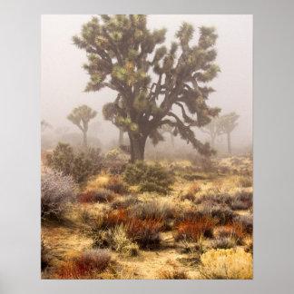California: Joshua Tree National Monument, Poster
