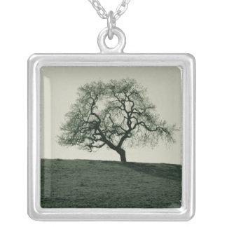 California Live Oak Necklace