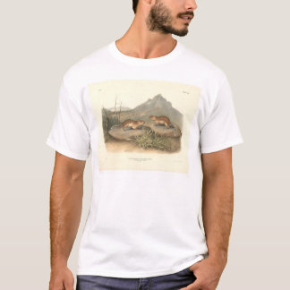 California Marmots by Audubon (0184A) T-Shirt