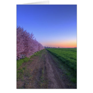 California orchard card