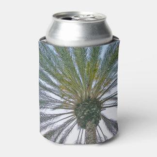 California Palm Tree