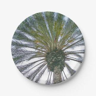 California Palm Tree Paper Plate