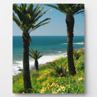 California Palm Trees & Ocean Display Plaque