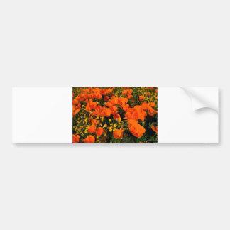 California Poppies Bumper Sticker