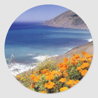 California Poppies Classic Round Sticker