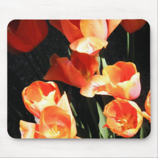 California Poppies Mouse Pad