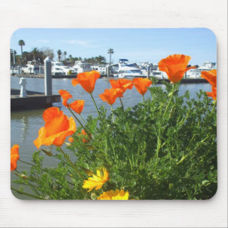 California poppies Mousepad