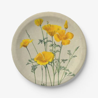 California Poppies Paper Plates 7 Inch Paper Plate