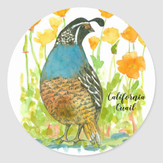 California Poppies Quail Bird Watercolor Classic Round Sticker