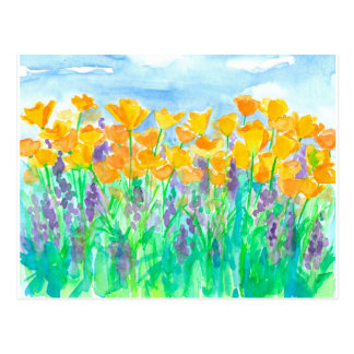 California Poppies Watercolor Painting Postcard