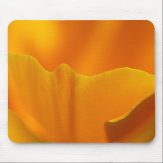 California Poppy Close-Up... Mouse Pad
