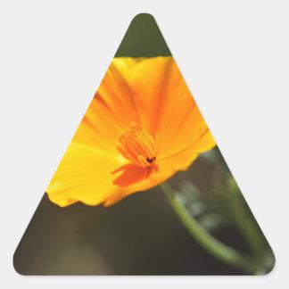 California Poppy (Eschscholzia californica) Triangle Sticker