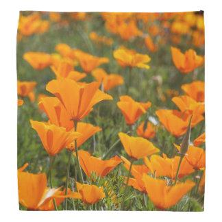 California Poppy Field Bandana