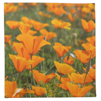 California Poppy Field Cloth Napkins