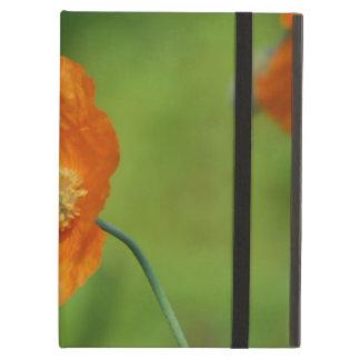 California Poppy Cover For iPad Air