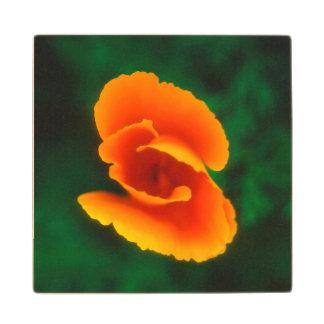 California Poppy Wood Coaster