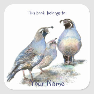 California Quail Birds This book belongs Bookplate Square Sticker