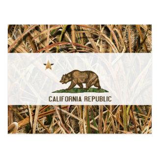 California Republic Flag Bear Camo Postcard