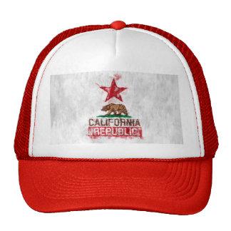 California Republic Flag Bear in Paint Style Decor Cap