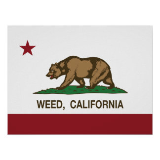 California Republic Flag Weed Poster