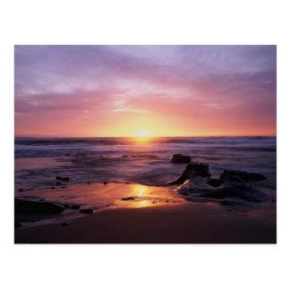 California, San Diego, Sunset Cliffs, Sunset 4 Postcard