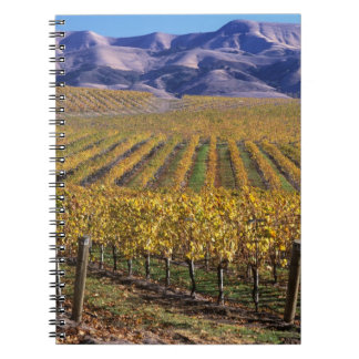 California, San Luis Obispo County, Edna Valley Notebook