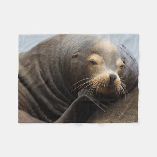 California Sea Lion Resting Fleece Blanket