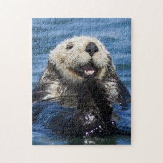 California Sea Otter Enhydra lutris) grooms Jigsaw Puzzle