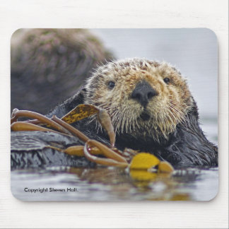 California Sea Otter Mousepad