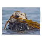 California Sea Otter Wrapped in Bull Kelp. Card