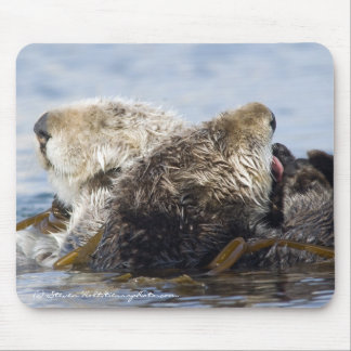 California Sea Otters Mouse Pad