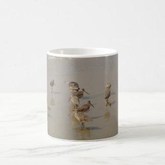 California Shore Birds Coffee Mug