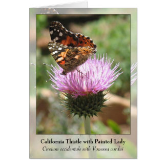 California Thistle with Painted Lady - Notecard