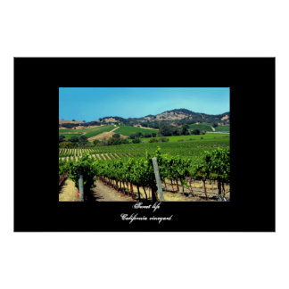 """California vineyard"" poster"