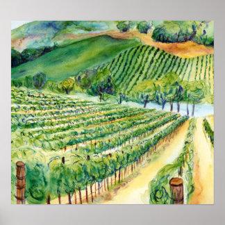 California Winery Vineyard Poster Art Print