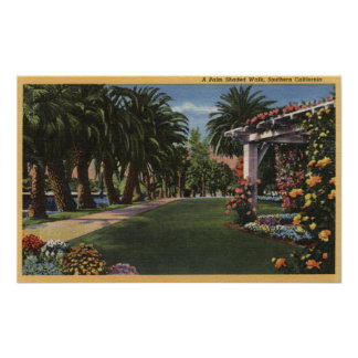 CaliforniaA Palm Shaded Walk Poster