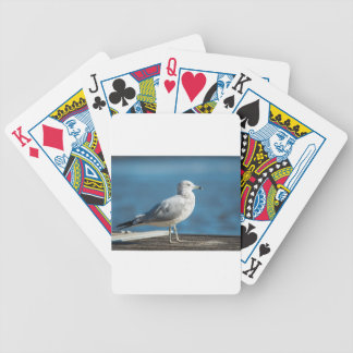 Call me M.Seagull Bicycle Playing Cards