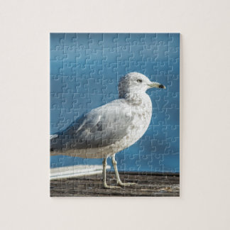 Call me M.Seagull Jigsaw Puzzle