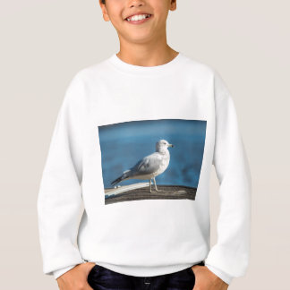 Call me M.Seagull Sweatshirt