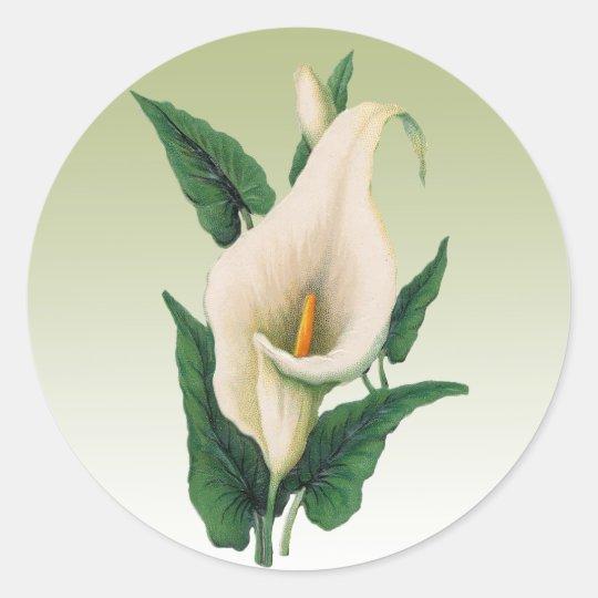 Calla Lilies Classic Round Sticker