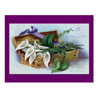 Calla Lilies for Easter Postcard
