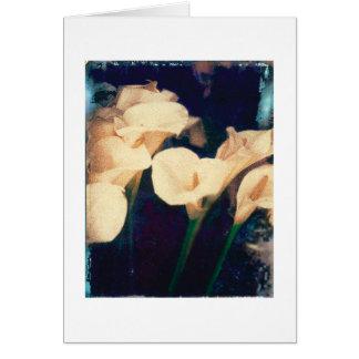 Calla lilies note card