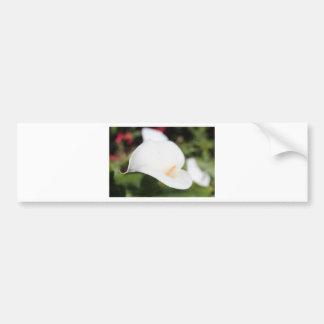 Calla Lilly Romance Bumper Sticker