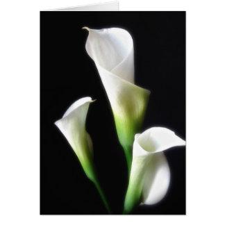Calla Lily 3 Card